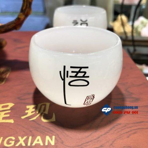 Bộ ấm tách trà Bạch Ngọc Onyx CP309